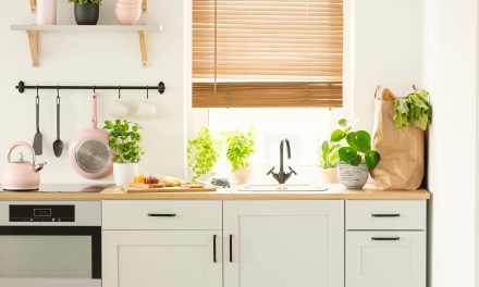 Small Steps, Big Impact: Easy Ways To Go Green